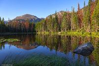0465 Nymph Lake