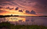 wildlife refuge, Cameron, Louisiana, sunset