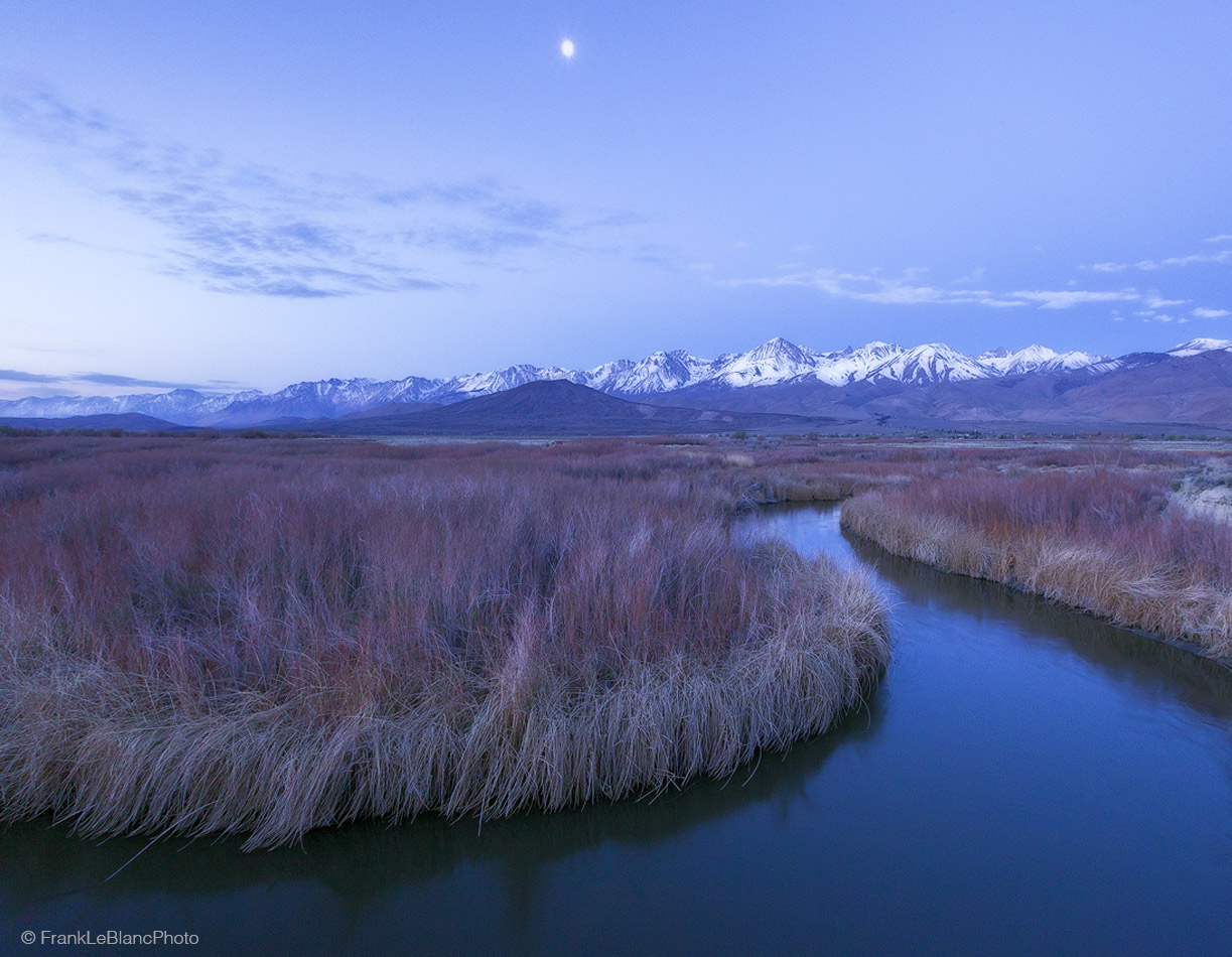 california, owens, valley, river, sierra, nevada, eastern, moutains, spring, trees, foliage, cottonwood, willow, rabbit brush...