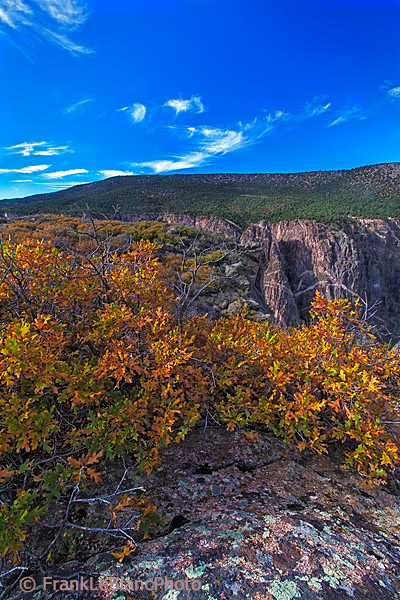 canyons, national parks, fall colors, photo