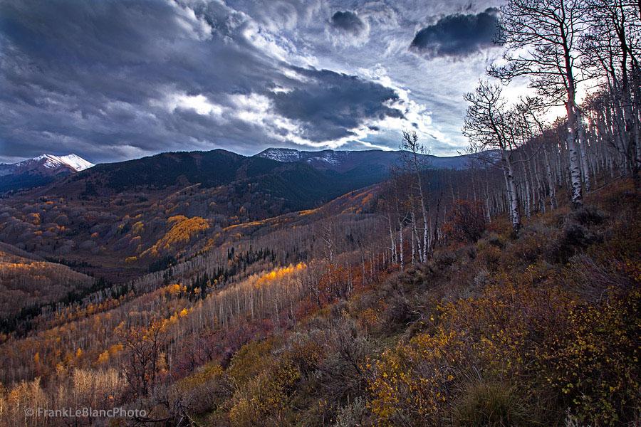 Mountains, Colorado, elk range, October  , photo