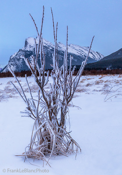 Banff National Park, Canada, Alberta, mountains, Vermillion Lakes, photo